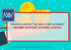 GRANTS UNDER THE SELF-EMPLOYMENT INCOME SUPPORT SCHEME (CSEISS)